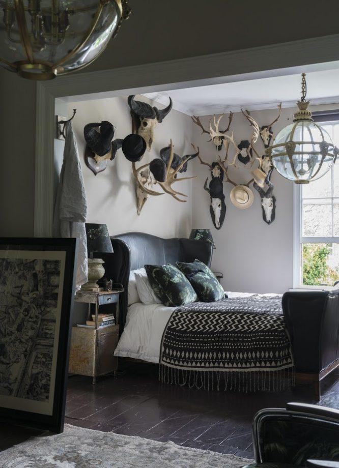 галерея идей стены со стеной из черепов животных